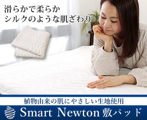 Smart Newton【スマートニュートン】敷きパット