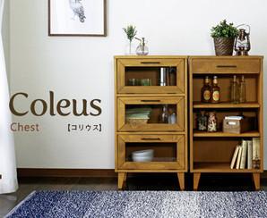 Coleus【コリウス】チェスト / ガラスチェスト